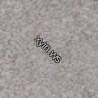 Texture 15537