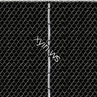 Texture 16008