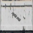 Texture 15765